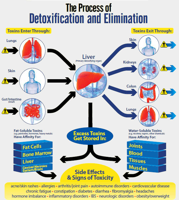 What Is A Good Natural Liver Detox