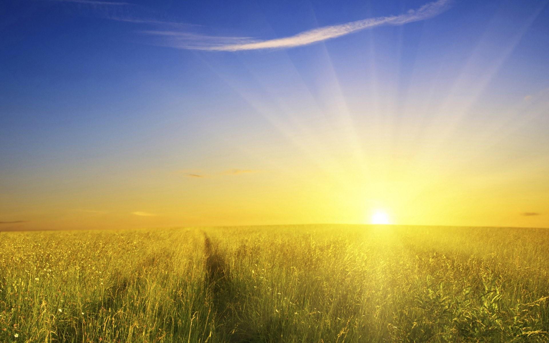 Benefits of Sunlight - detoxforlife.biz